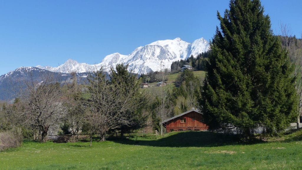 Chalet Margot 5 new apartments in Combloux l Stone and Living