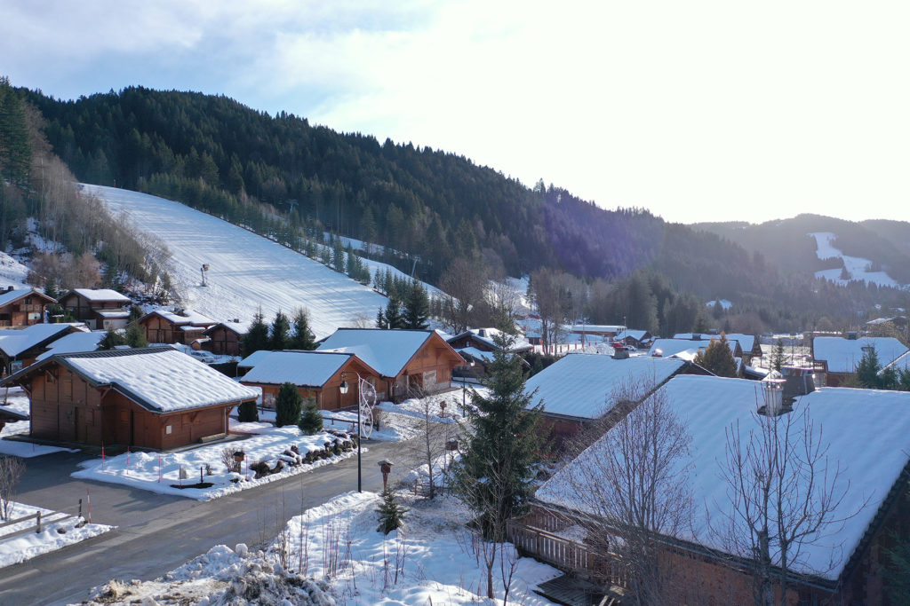Cottage Alpin new apartment for sale in Les Gets l Stone and Living